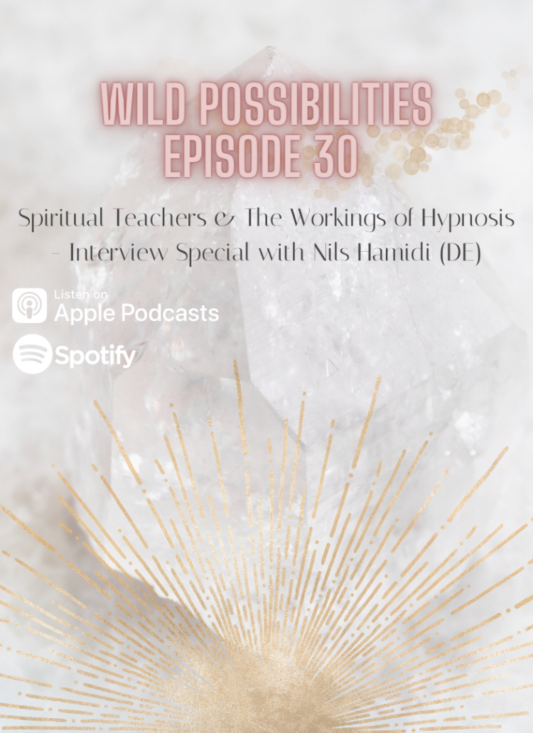 Wild Possibilities: Spiritual Teachers & The Workings of Hypnosis with Nils Hamidi (DE)